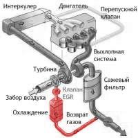 Удаление сажевого фильтра DPF / FAP. Программное отключение сажевого фильтра, эмуляция сажевого фильтра. Отключение рециркуляции EGR ЕГР, впрыска мочевины AdBlue SCR и вихревых заслонок.